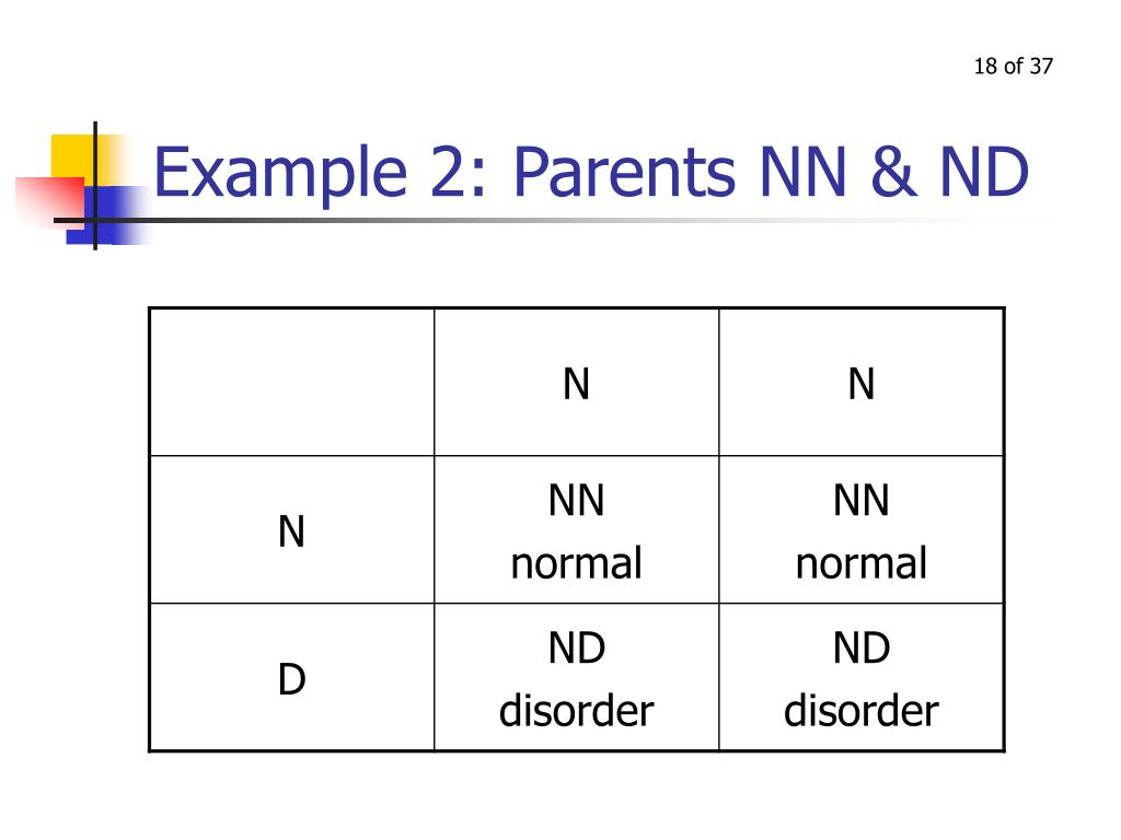 Example 2: Parents NN & ND