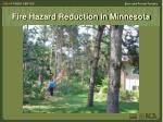 fire hazard reduction in minnesota