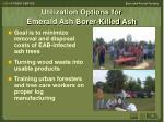 utilization options for emerald ash borer killed ash