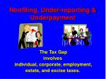 nonfiling under reporting underpayment