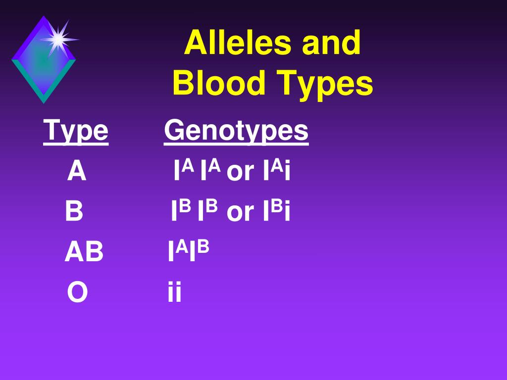 Alleles and            Blood Types