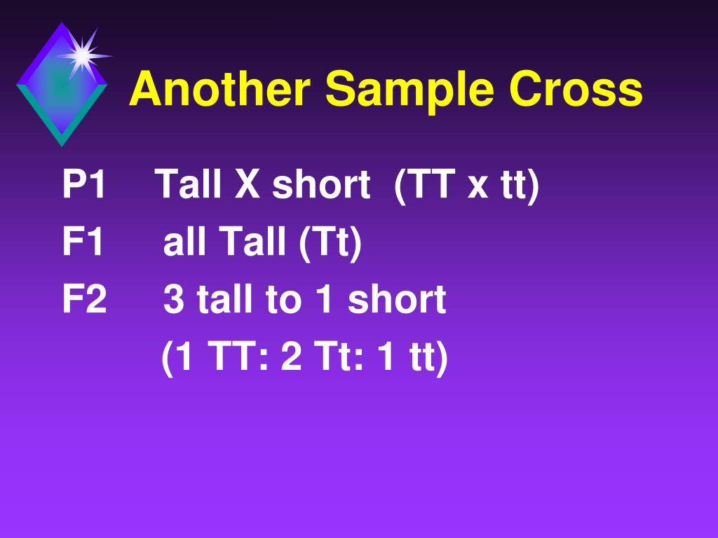 Another Sample Cross