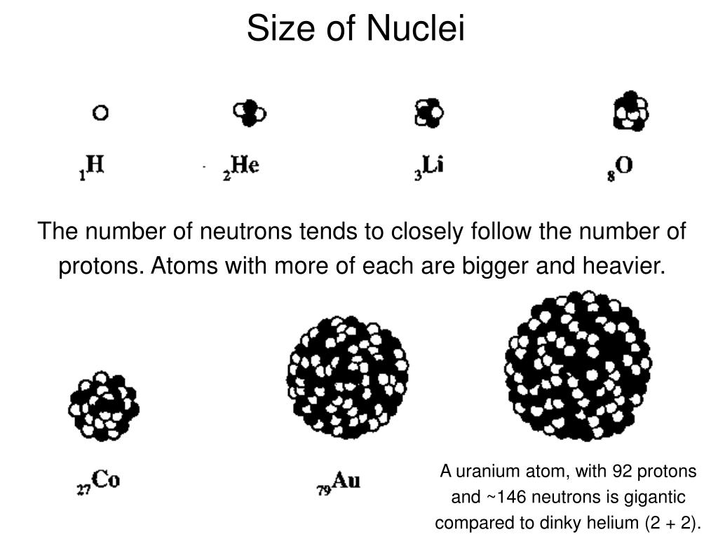 Size of Nuclei