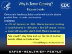 why is terror growing because it works17
