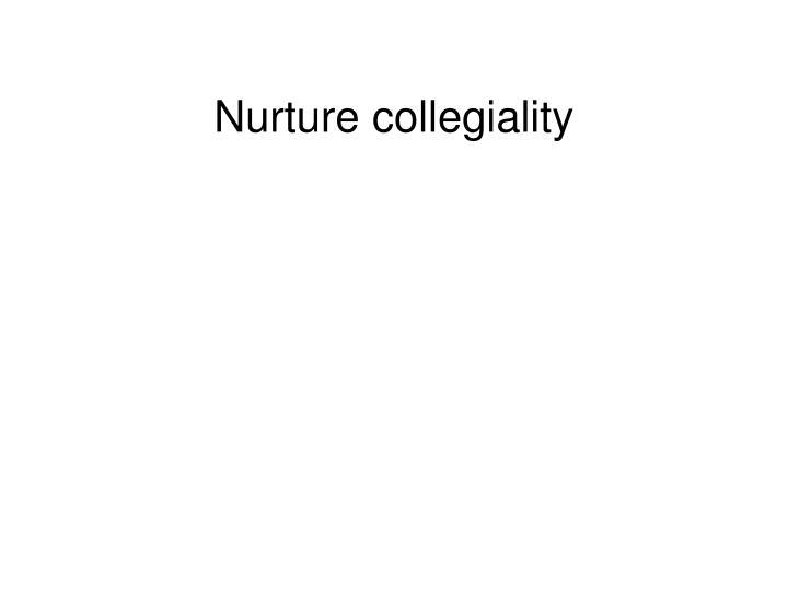 Nurture collegiality