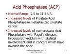 acid phosphatase acp