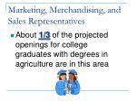 marketing merchandising and sales representatives