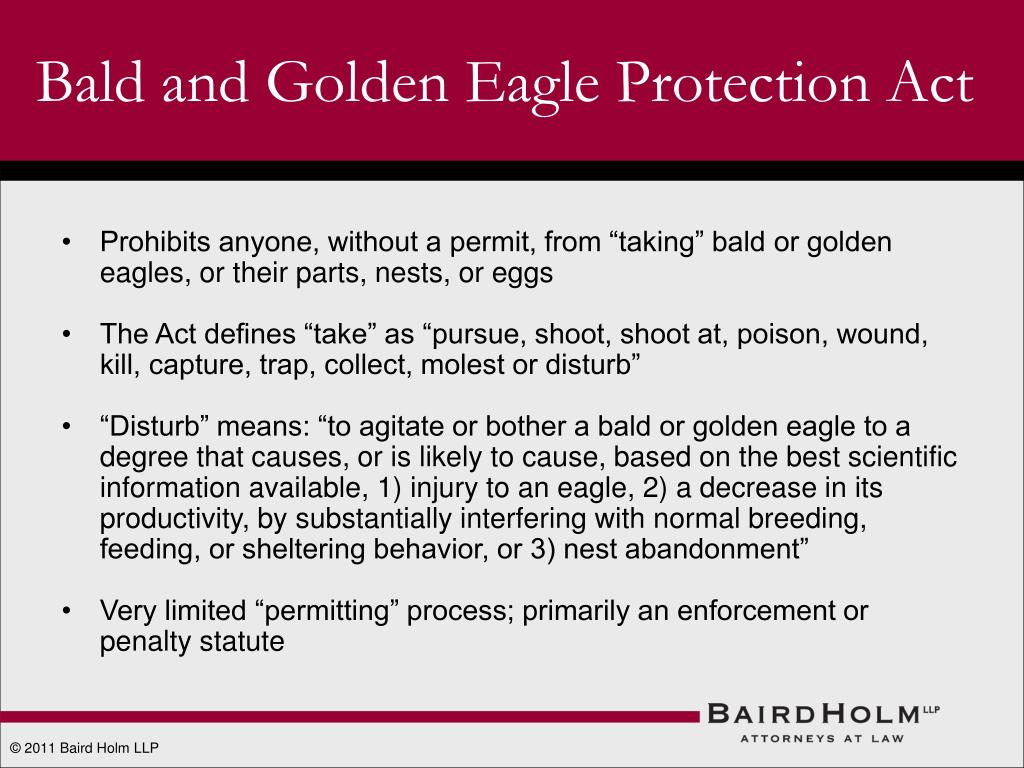 Bald and Golden Eagle Protection Act