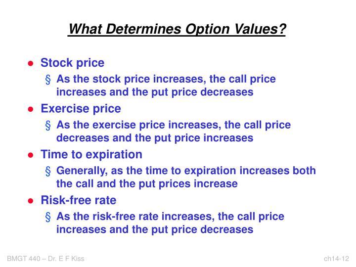 What Determines Option Values?