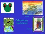 celebrating amphibians