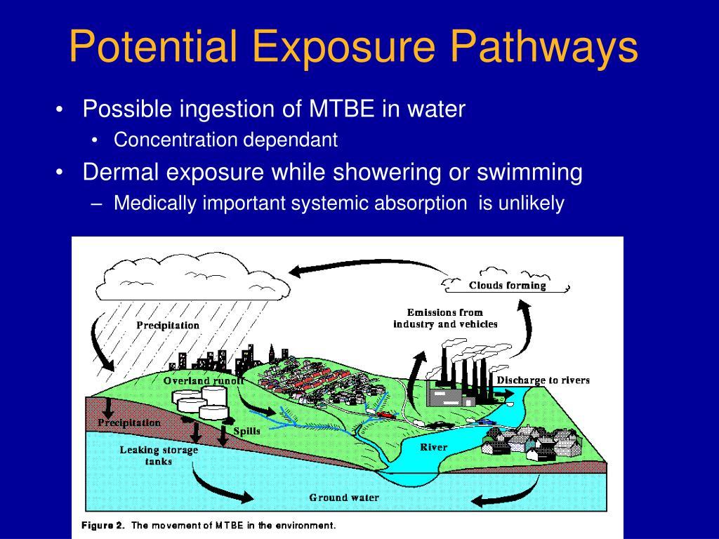 Potential Exposure Pathways