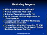 mentoring program