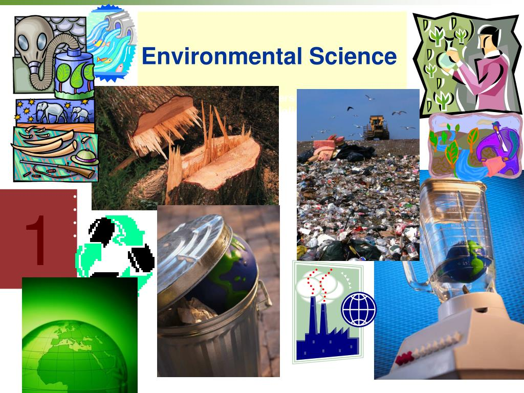 environmrntal science Environmental science is the science of the interactions between the physical, chemical, and biological components of the environment, including their effects on all types of organisms but more often refers to human impact on the environment.