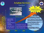 aviation services summary