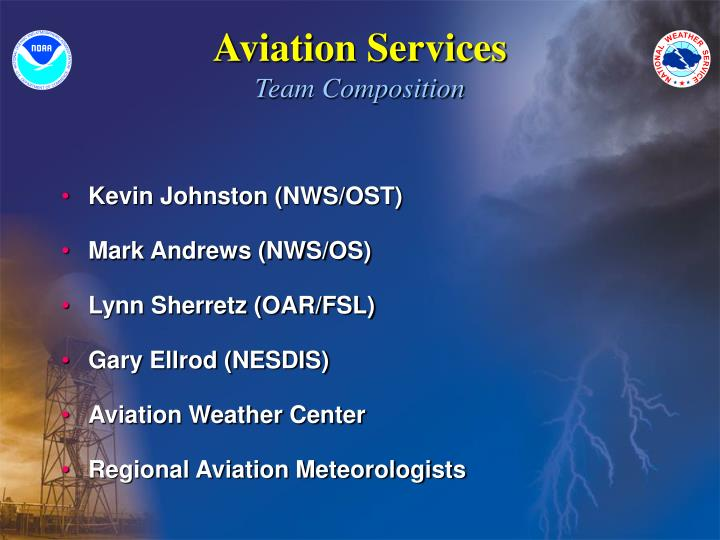 Aviation services team composition