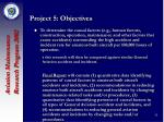 project 5 objectives