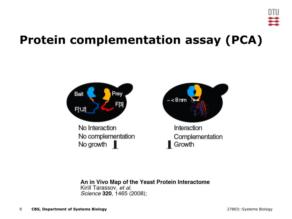 Protein complementation assay (PCA)
