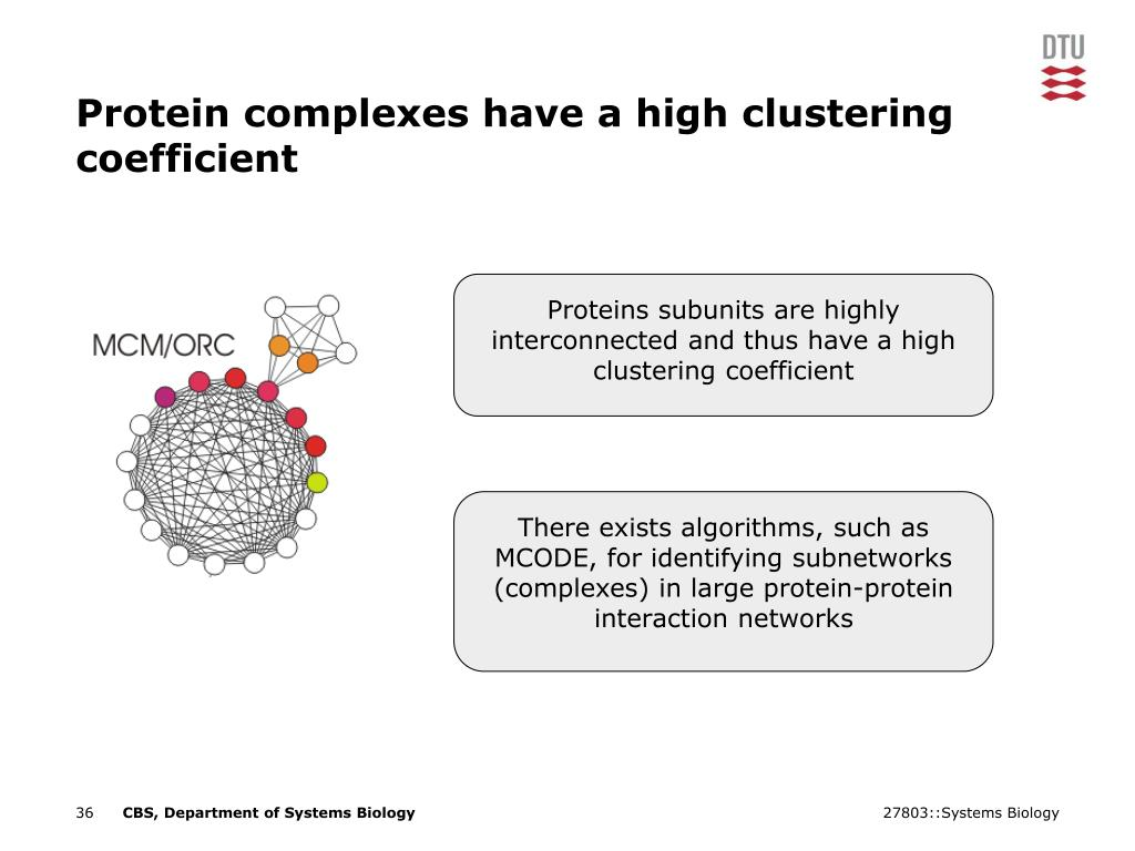 Proteins subunits are highly interconnected and thus have a high clustering coefficient