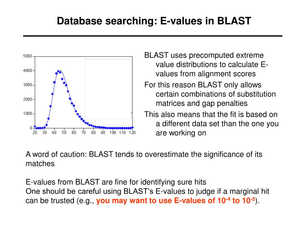 Database searching: E-values in BLAST