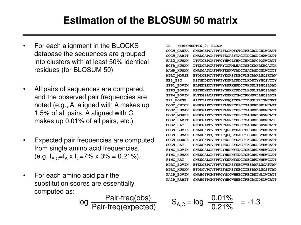 Estimation of the BLOSUM 50 matrix