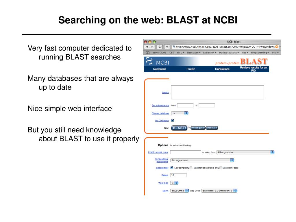 Searching on the web: BLAST at NCBI