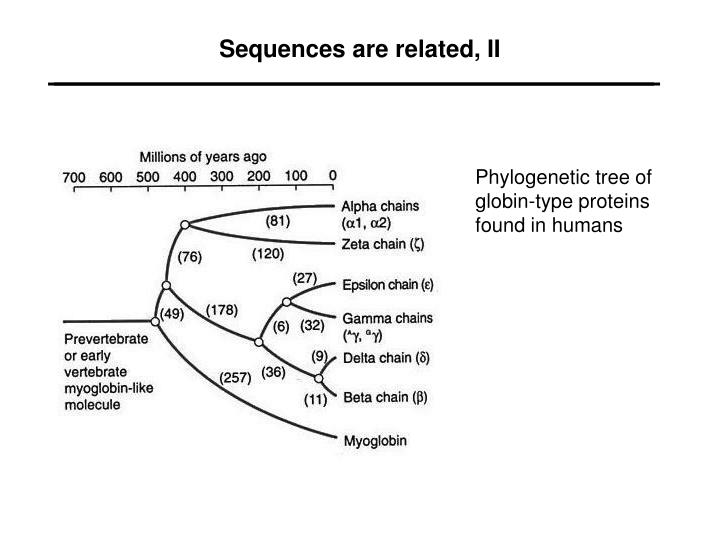 Sequences are related ii