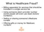what is healthcare fraud17