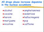 all drugs abuse increase dopamine in the nucleus accumbens