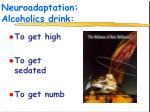 neuroadaptation alcoholics drink1