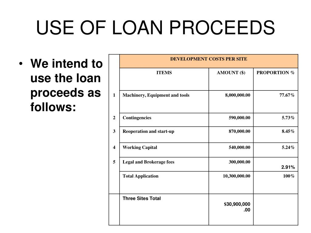USE OF LOAN PROCEEDS