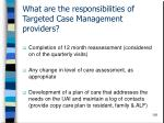 what are the responsibilities of targeted case management providers