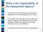 what is the responsibility of the assessment agency