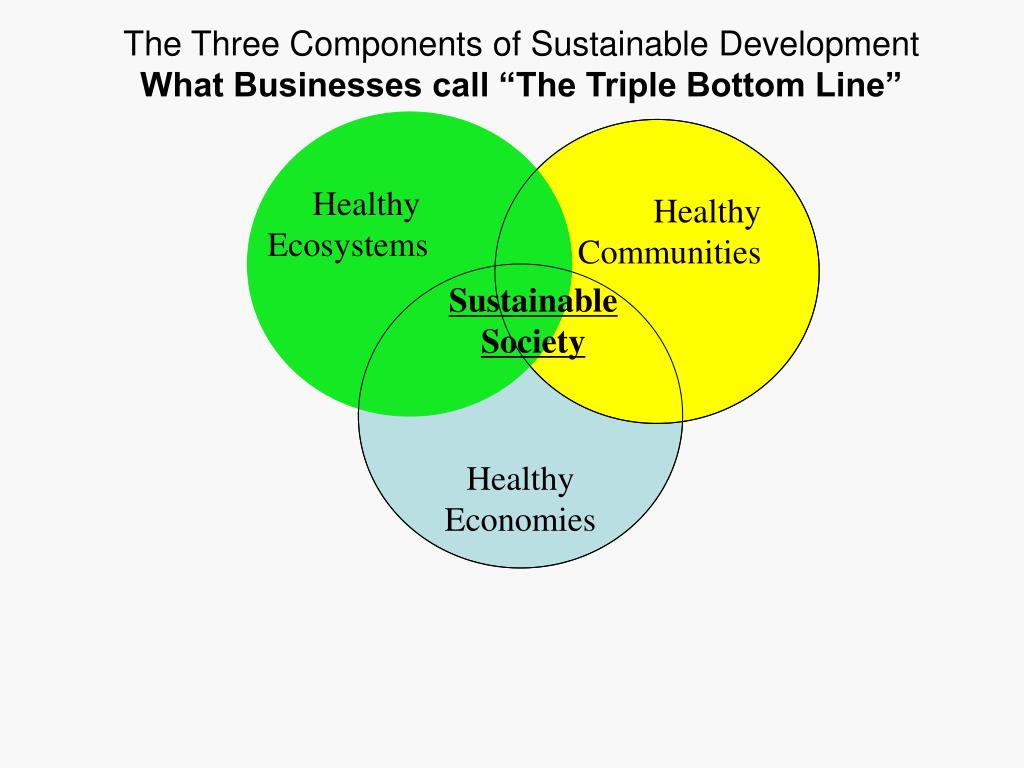 The Three Components of Sustainable Development