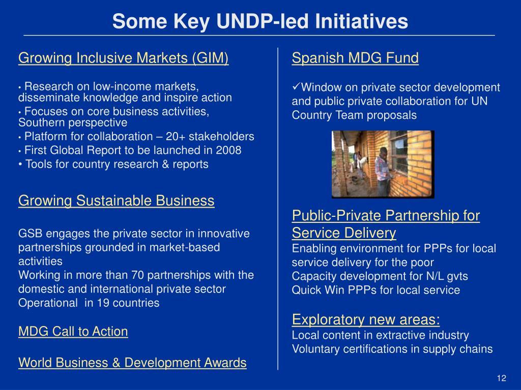 Some Key UNDP-led Initiatives