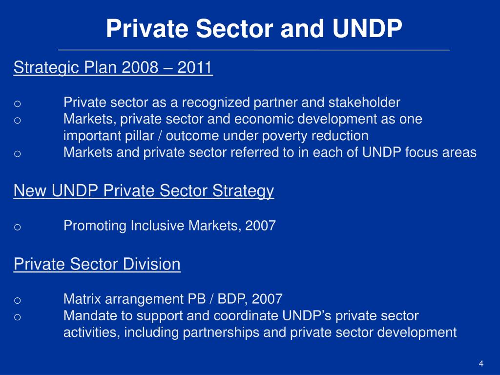 Private Sector and UNDP