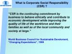 what is corporate social responsibility csr3