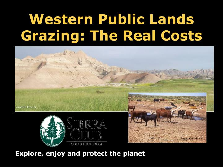 western public lands grazing the real costs n.