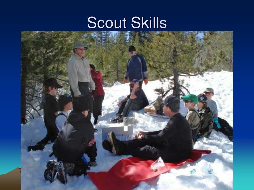 Scout Skills
