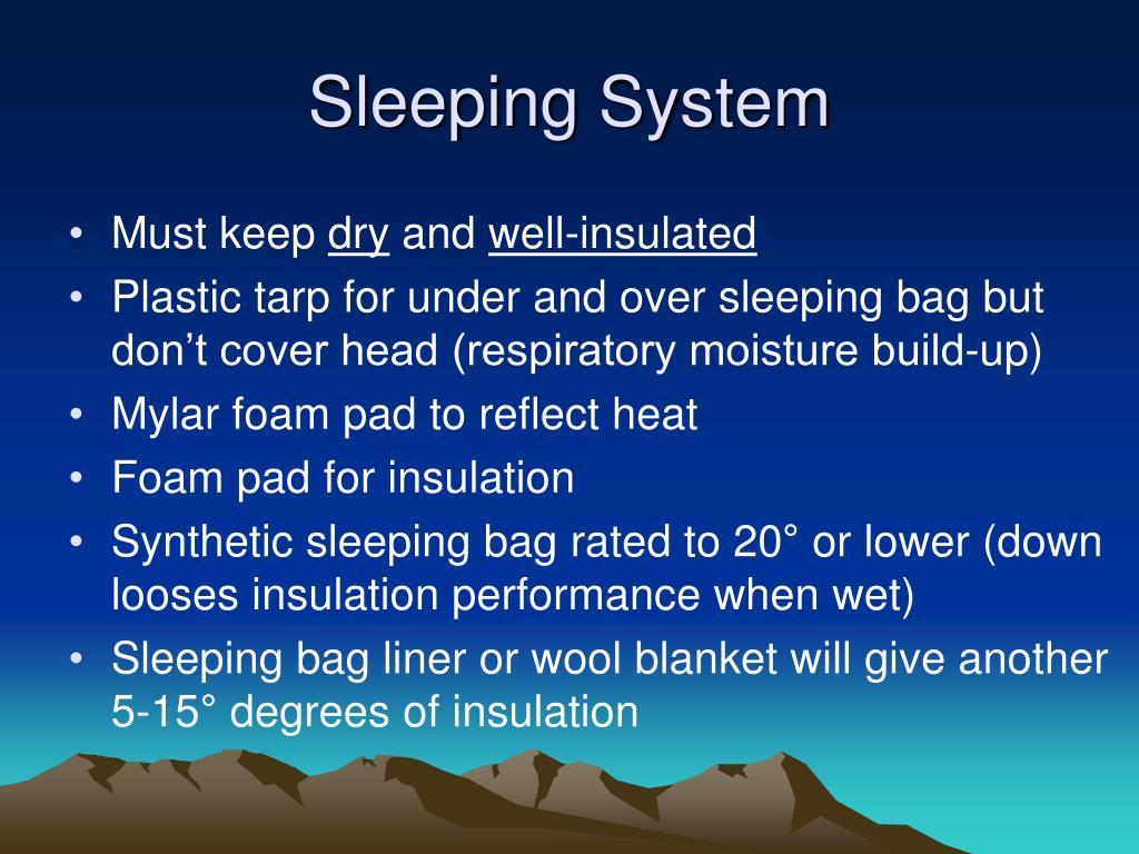 Sleeping System