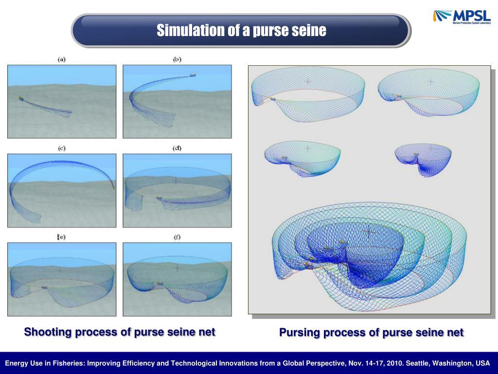 Simulation of a purse seine