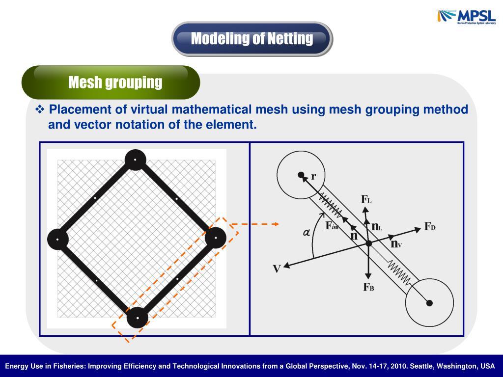 Modeling of Netting