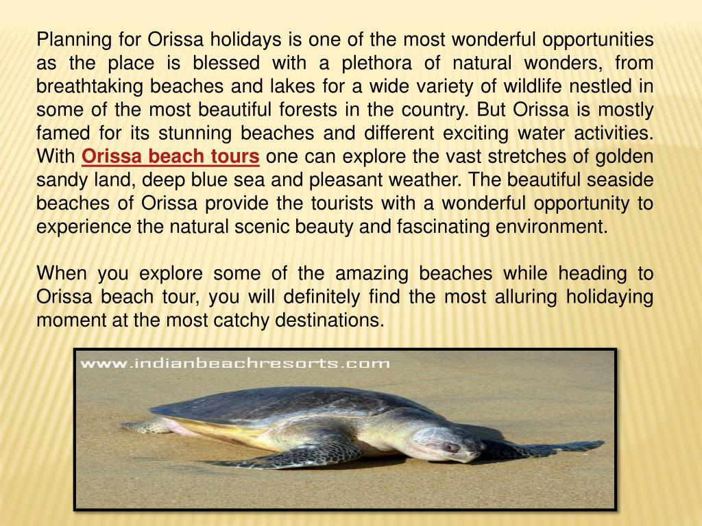 Planning for Orissa holidays is one of the most wonderful opportunities as the place is blessed with a plethora of natural wonders, from breathtaking beaches and lakes for a wide variety of wildlife nestled in some of the most beautiful forests in the country. But Orissa is mostly famed for its stunning beaches and different exciting water activities. With