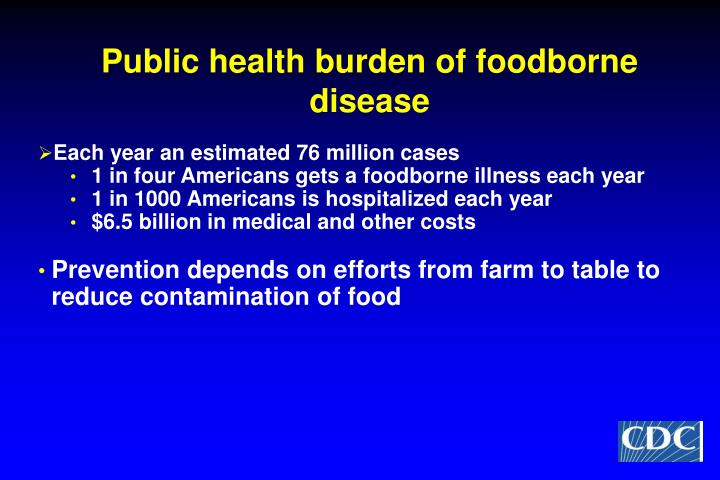 Public health burden of foodborne disease