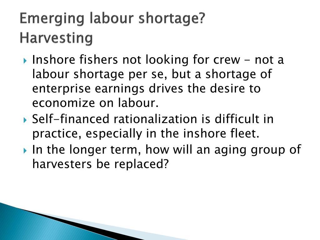 Emerging labour shortage?