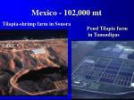 mexico 102 000 mt