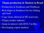 tilapia production markets in brasil