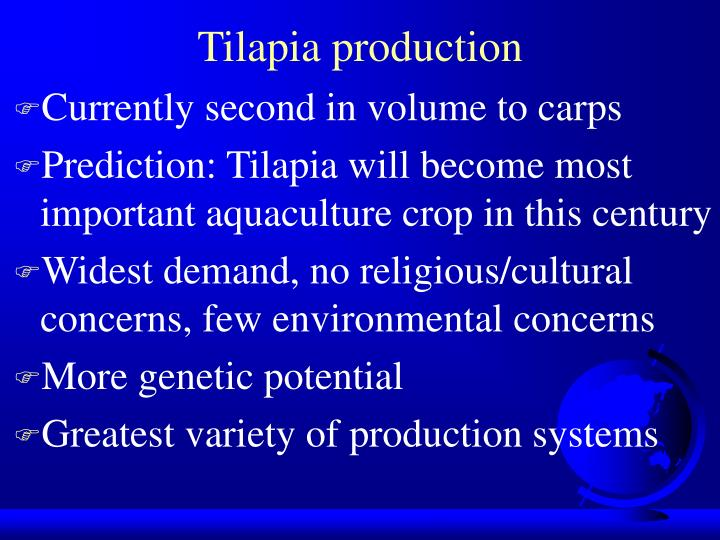 Tilapia production