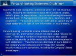 forward looking statement disclaimer