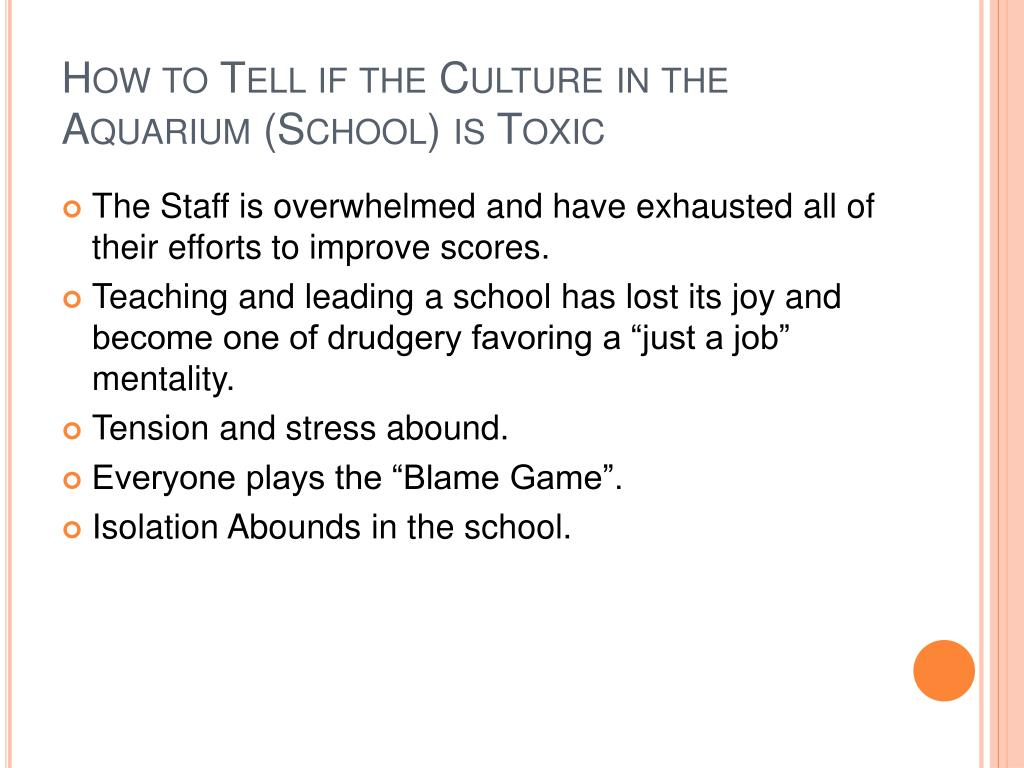 How to Tell if the Culture in the Aquarium (School) is Toxic