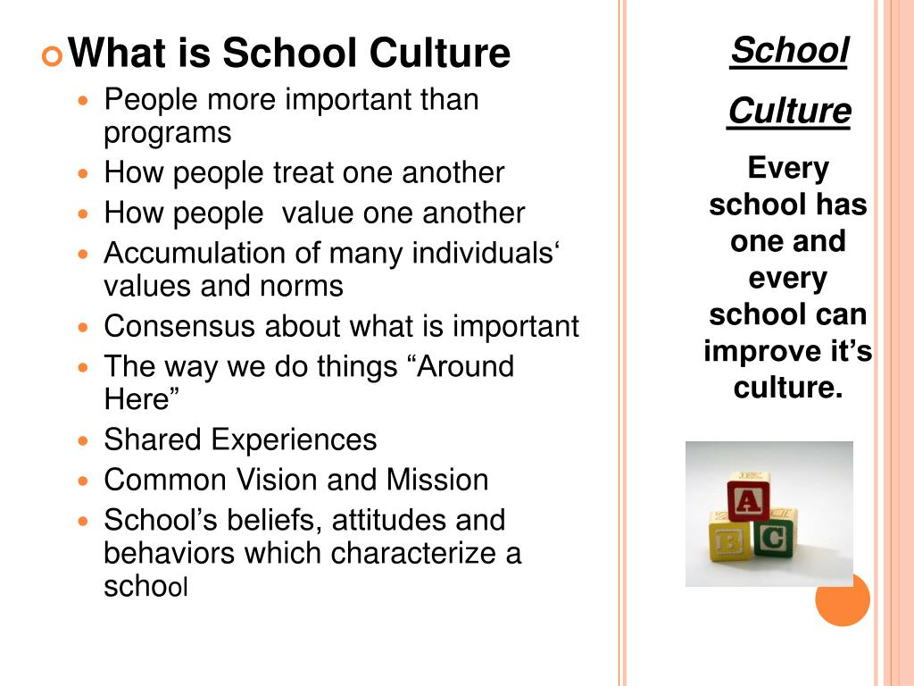 What is School Culture